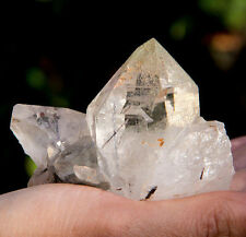 Himalayan Quartz Cluster with Rutile Inclusions - EBHQ4231Y