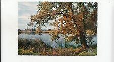 BF22425 en sologne a l automne un etang  france  front/back image
