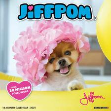 Jiffpom (Jiff the Pomeranian(dog breed calendar)2021 Wall Calendar(Free Shipping