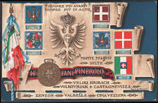 """cartolina militare 14° REGGIMENTO FANTERIA """"PINEROLO"""""""