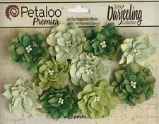 Dahlia Mix GREEN 10 Teastained Paper Flowers 40mm across Darjeeling Petaloo Ver