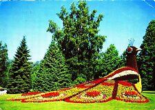 Insel Mainau im Bodensee , 1985 gelaufene Ansichtskarte