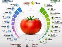 Lot 6 sachets de 10+graines de tomates cerise - cherry SUPER tomato seeds m.bio