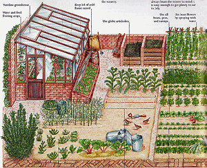 SELF SUFFICIENCY, Smallholding, Homestead, Good Life BOOK SCANS Collection