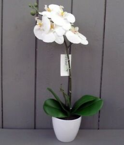 Artificial White Orchid Plant in Pot - 45cm Tall