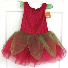 NWT Gymboree Starwberry Fairy Costume L (10-12) Play Dress Up Halloween Dance