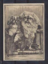 1938 UK Dog Art Etching Ardath Large Cigarette Trade Card PEKE PEKINGESE VG+