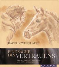 David de Wispelaere - Eine Sache des Vertrauens  Fohlen und Jungpferdeausbildung