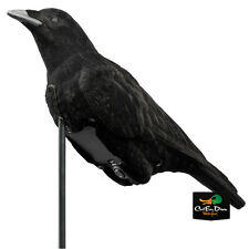 NEW LUCKY DUCK CAWLIN CROW FLOCKED DECOY E-CALLER SOUND RAVEN HUNTING