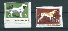 Bulgaria,1964,dogs,shift colours,MNH