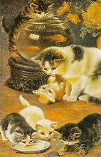 Grußkarte: Kittens Playing - ausgelassene Katzenfamilie- Malerei von Anonymus