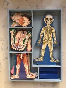 Human Body Magnetic Playset Melissa & Doug