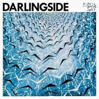 Darlingside - Birds Say Neuf CD