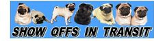 PUG Show Off Dog Car Sticker By Starprint