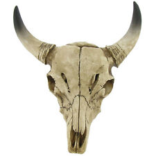 "9"" tall Bull Skull w/Horns Western Tribal Wall Hanging Decor Steer Cow."