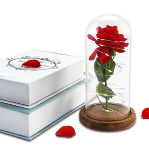 The Beauty & The Beast Enchanted Rose Glass Dome LED Lighted Wedding Decor Gift