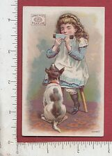 9170 Pearline soap trade card James Pyle, NYC music girl playing the comb to dog