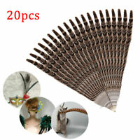 20x Natural Pheasant Tail Feathers DIY Craft Party Wedding Home Decor 10-12inch