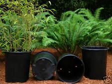 Nursery pots plant pot 30 NEW THICK TRADE 7 gallon TALL POTS FREEE SHIPPING