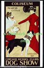 1902 Chicago Kennel Club Dog Show~Collie~Boston Terrier~Bulldog~.New Note Cards