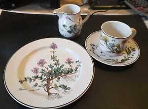 Villeroy & Boch: Botanica Kaffeeservice für 6 Personen + Milchkännchen (19tlg.)