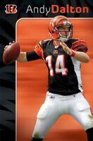 CINCINNATI BENGALS POSTER ~ ANDY DALTON FOCUS 22x34 NFL Football Quarterback 457