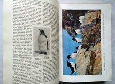 LUDWIG KOCH THE ENCYCLOPEDIA OF BRITISH BIRDS C1955 ? 600 B/W ILLS 50 COL PLATES
