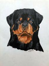 "ROTTWEILER dog pet animal realism 11""x14"" drawing pencils on paper by ArtKaska"