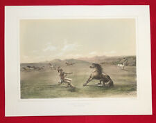 Catching The Wild Horse, George Catlin, Original Lithograph,Limited Edition 1970