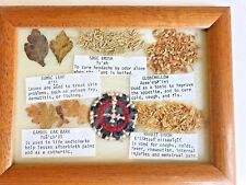 Vintage Medicinal Leaves and Seeds Framed in Glass Excellent Fast Shipping