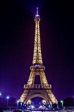 STUNNING CANVAS PARIS CITYSCAPE SKYLINE #461 PARIS EIFFEL TOWER CANVAS PICTURE