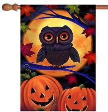New listing New Toland - Halloween Owl - Colorful Full Moon Pumpkin Bird House Flag