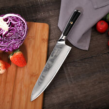 """8""""  VG10 steel blade kitchen knife professional G10 handle damascus chef knife"""