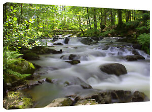 Forest Bridge Stream Waterfall Canvas Wall Art Picture Print