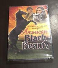 American Black Beauty (DVD) NEW