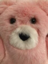 Vermont Teddy Bear Take-Along -Teddy With Tags Pink