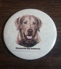 "Chesapeake Bay Retriever Button Pin Back 2 1/4"" Nice!"