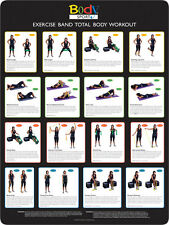 Body Sport Resistance BAND Workout Sheet Laminated Exercise Poster BDSRBWL New
