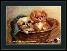 Vintage English Print Pekingese Puppy Dog Dogs Puppies Basket Art Picture Poster
