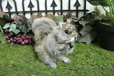 Brown Squirrel Real Size Realistic Taxidermy Figurine Stuffed Furry Animal