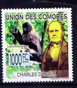 Comoros 2009 MNH, Explorer Darwin, grey-cheeked mangabey, Wild Animals (D2n)