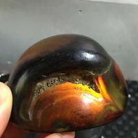 127g Bonsai Suiseki-Natural Gobi Agate Eyes Stone-Rare Stunning Viewing  a0019