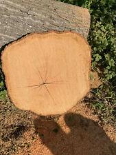 Holzscheibe Baumscheibe ca.90x110x5 cm Tischplatte Buche