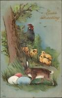 Easter - Rabbit Protects Eggs - Chicken & Chicks c1910 Postcard