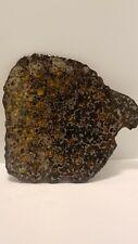 New listing Huge Rare Slice Meteorite Olive Pallasite 827g G4446