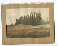 VINTAGE 1930's EUCALYPTUS TREES FOOT HILLS N. CLAREMONT CALIFORNIA W/C PAINTING