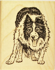 Border Collie Rubber Stamp * Stealthy Approach Beautiful Detail #454