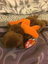 1993 Retired Chocolate the Moose Ty Beanie Baby Plush Toy New with Teeny Beanie!