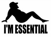 I'm Essential Funny Pin Up Social Distance Decal Sticker Window Bumper Trucker