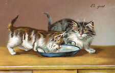 "Vintage Cat Postcard,Yellow & Grey Tabby Kittens,""Le Gout"",c.1909"